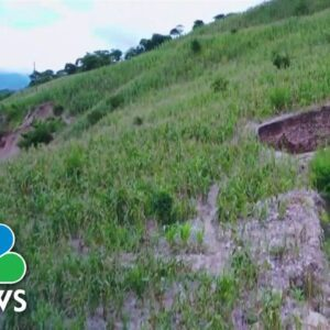 Climate Change Ravaging Crops In Guatemala, Millions On Brink Of Starvation
