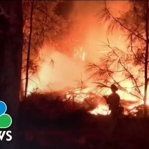 California Wildfires: Sequoias Burn As State Grapples With Multiple Blazes
