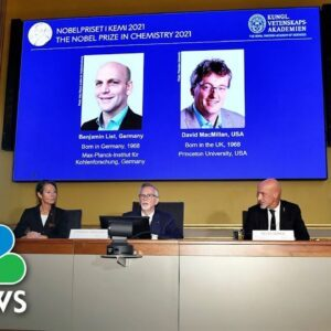 Nobel Prize For Chemistry Awarded For Development Of Tool To Build Molecules