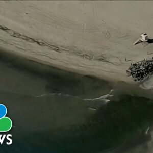 State Of Emergency In California After Major Oil Spill